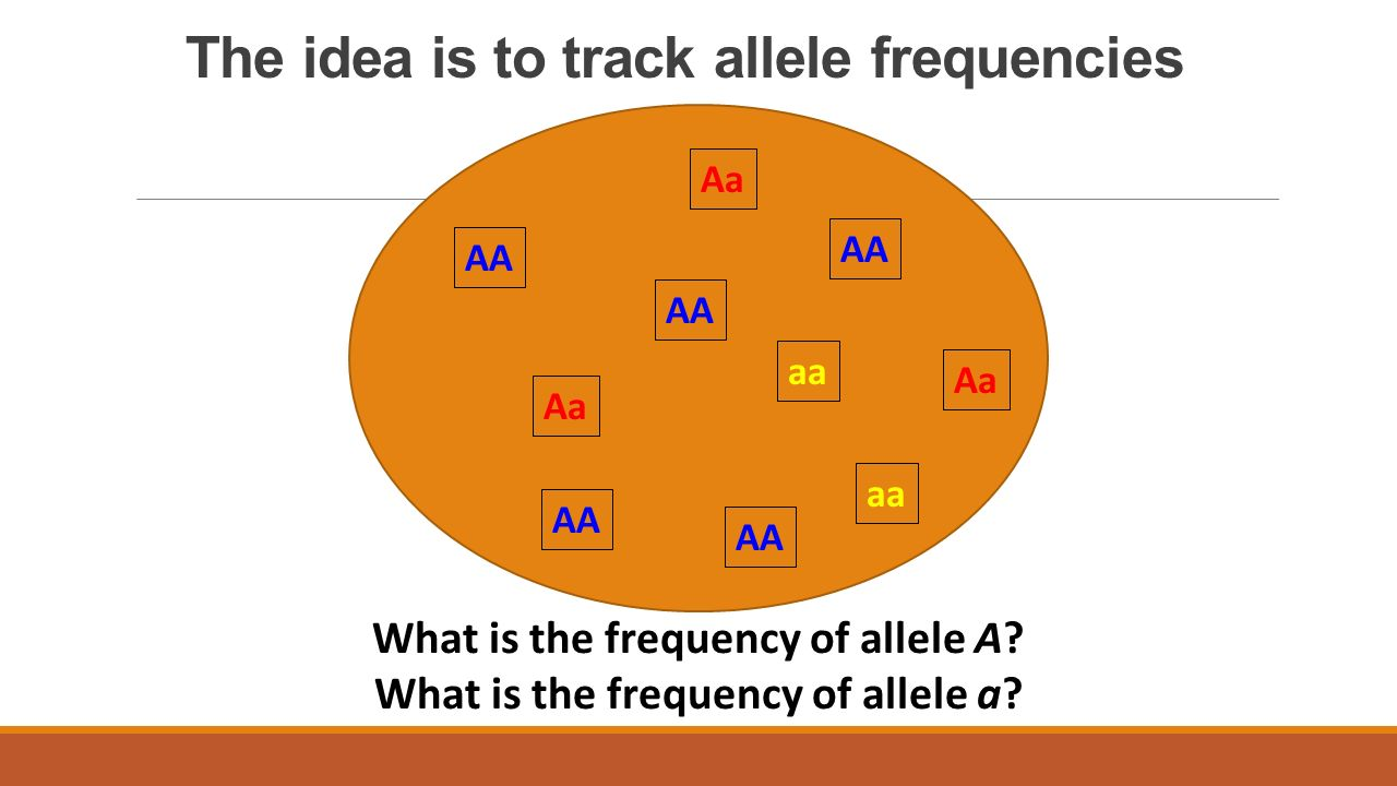 The idea is to track allele frequencies