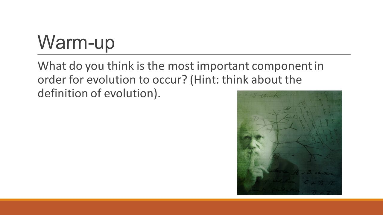 Warm-up What do you think is the most important component in order for evolution to occur.