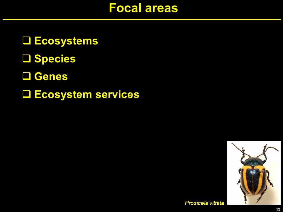 Focal areas Ecosystems Species Genes Ecosystem services