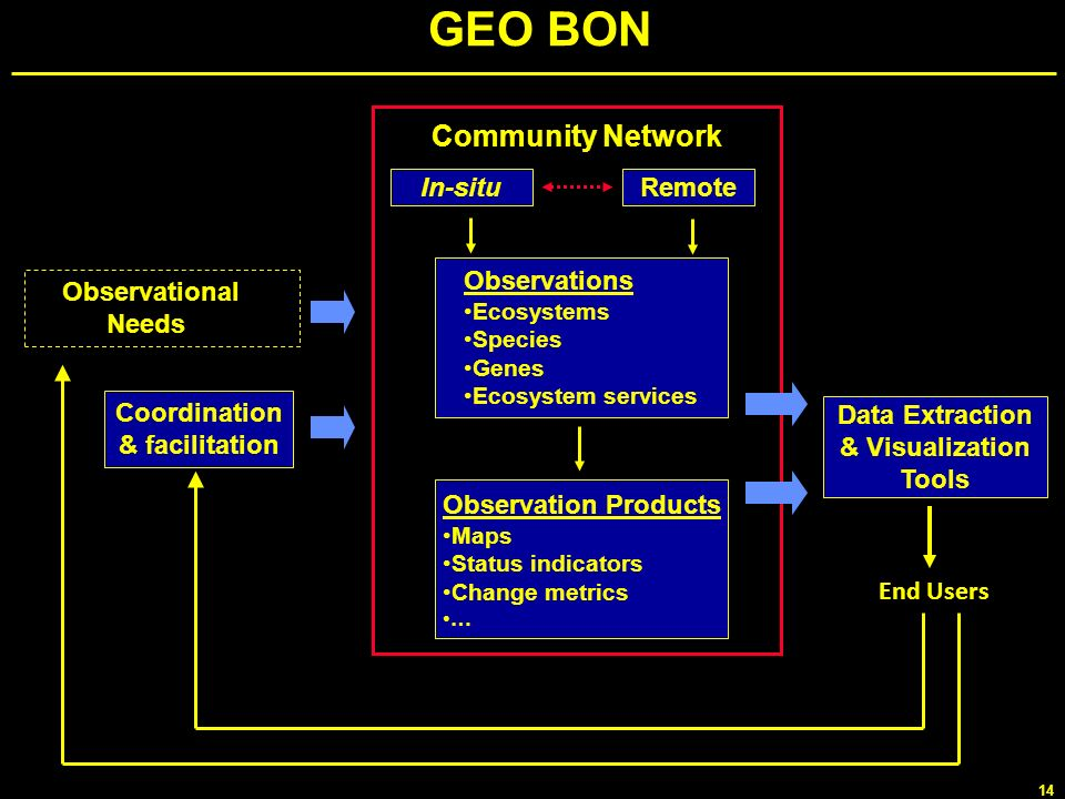 GEO BON Community Network In-situ Remote Observations Observational