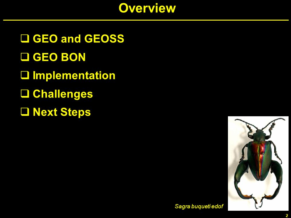 Overview GEO and GEOSS GEO BON Implementation Challenges Next Steps