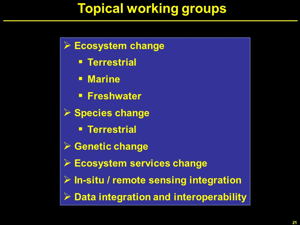 Topical working groups