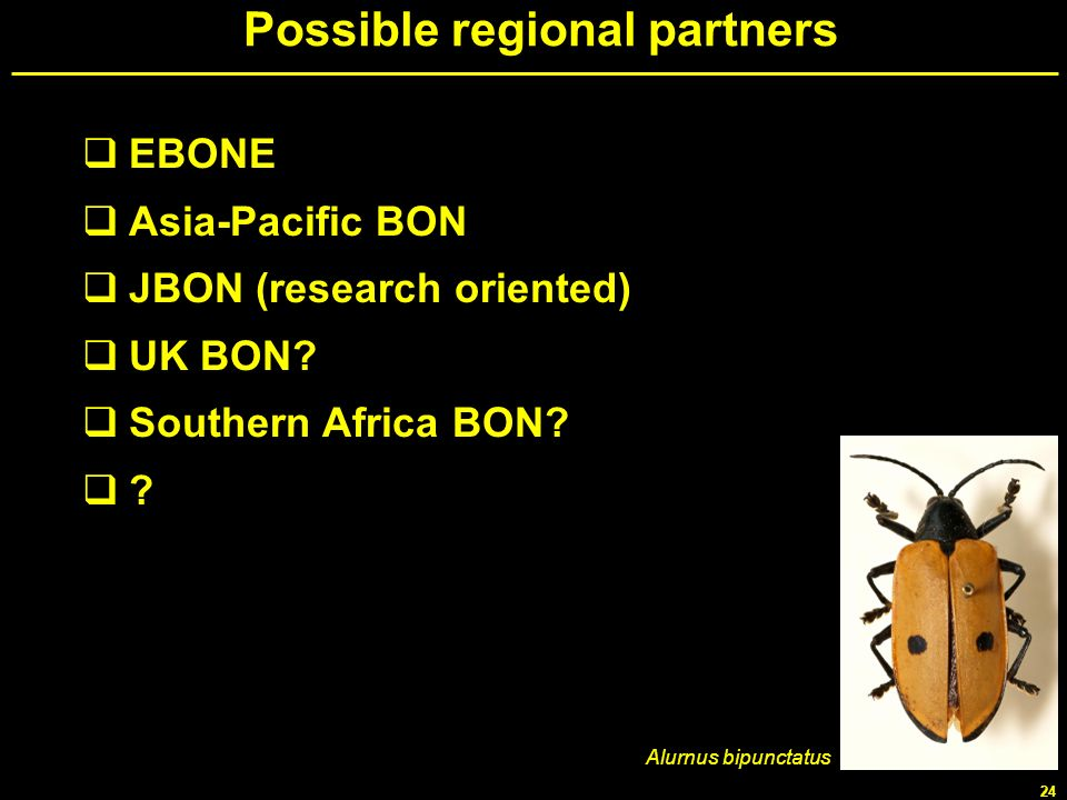 Possible regional partners