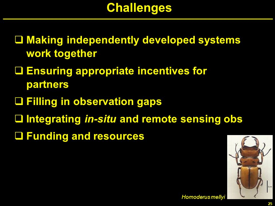 Challenges Making independently developed systems work together