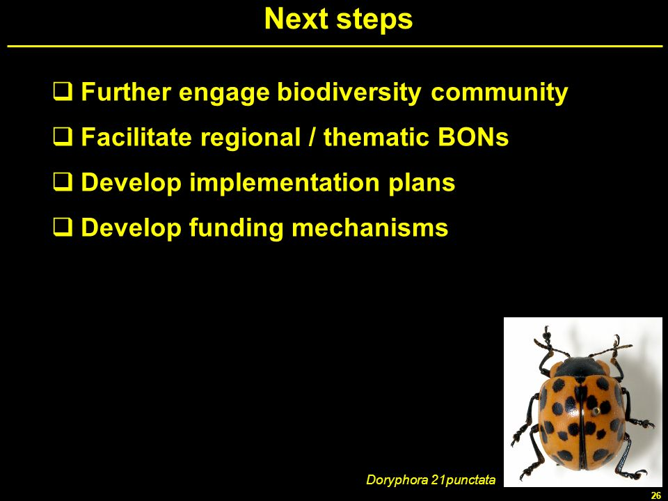 Next steps Further engage biodiversity community