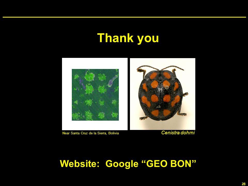 Website: Google GEO BON
