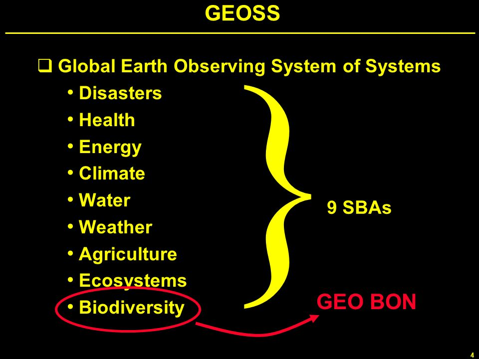 } GEOSS GEO BON Global Earth Observing System of Systems Disasters