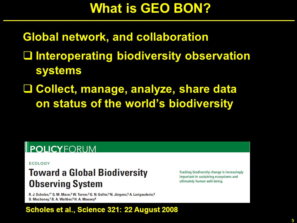 What is GEO BON Global network, and collaboration