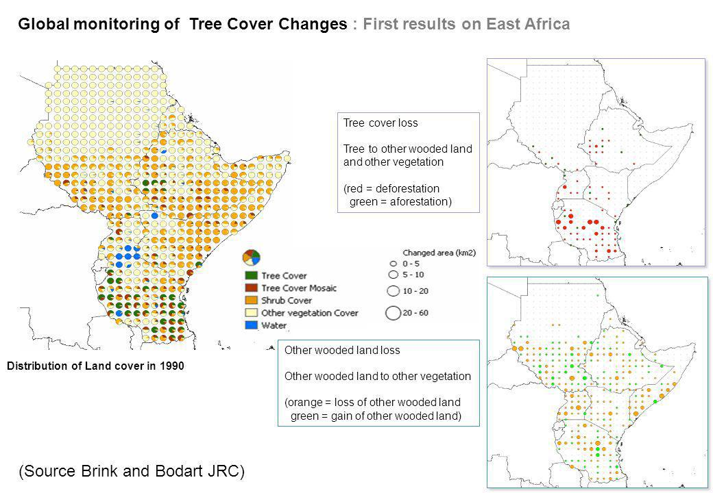 Global monitoring of Tree Cover Changes : First results on East Africa