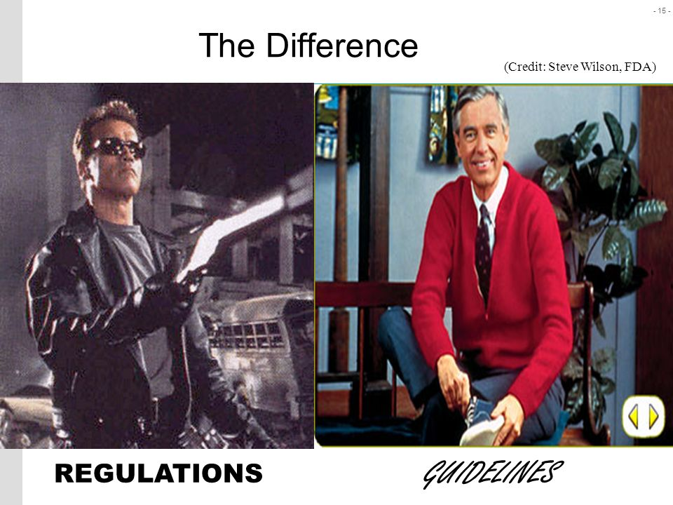 The Difference (Credit: Steve Wilson, FDA) REGULATIONS GUIDELINES