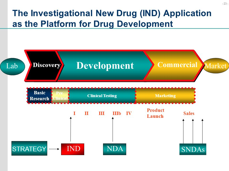 The Investigational New Drug (IND) Application as the Platform for Drug Development