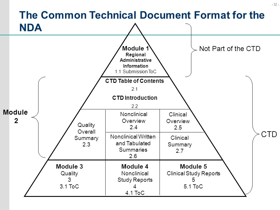 The Common Technical Document Format for the NDA