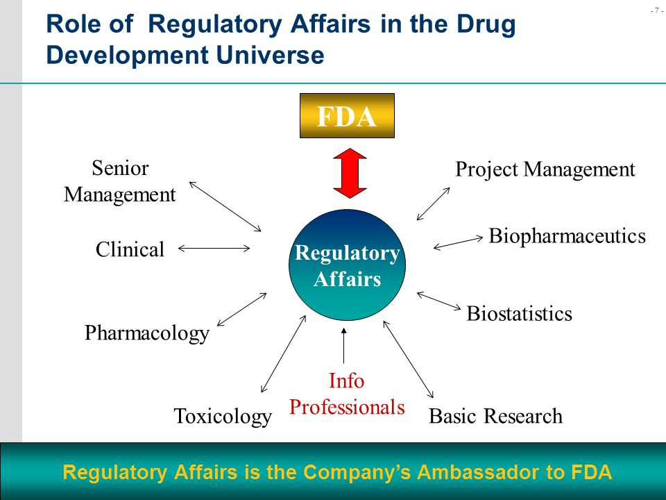 Role of Regulatory Affairs in the Drug Development Universe