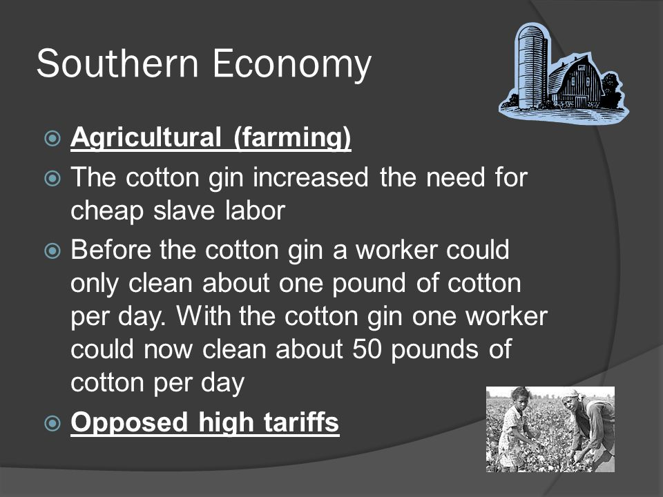 Southern Economy Agricultural (farming)
