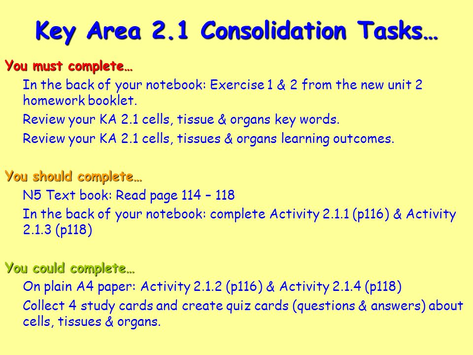 quiz 6 consolidation