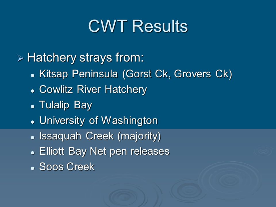 CWT Results Hatchery strays from: