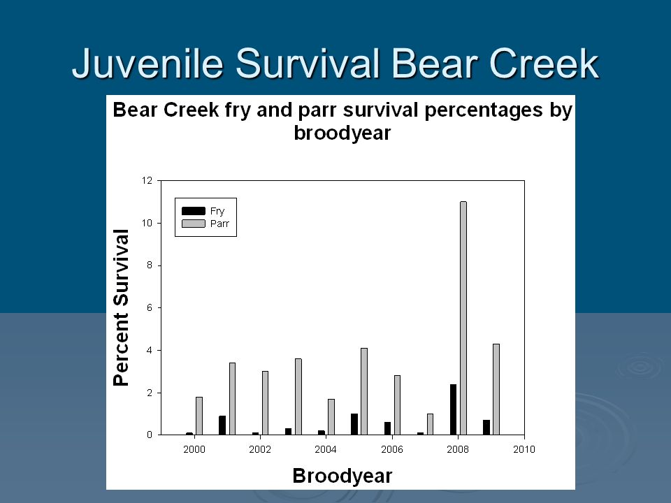 Juvenile Survival Bear Creek