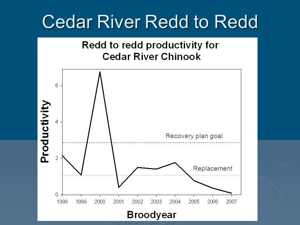 Cedar River Redd to Redd
