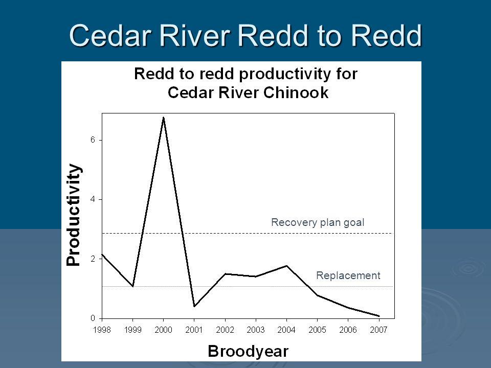 Cedar River Redd to Redd