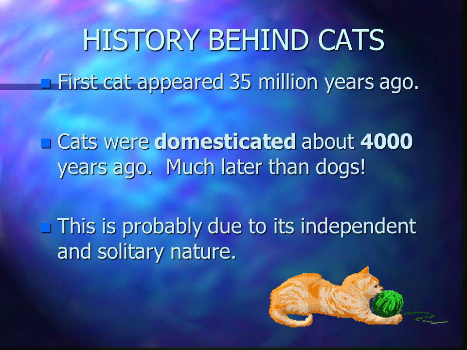 HISTORY BEHIND CATS First cat appeared 35 million years ago.