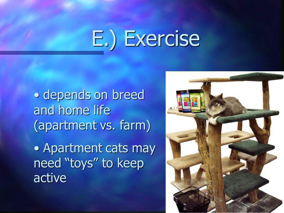 E.) Exercise depends on breed and home life (apartment vs. farm)