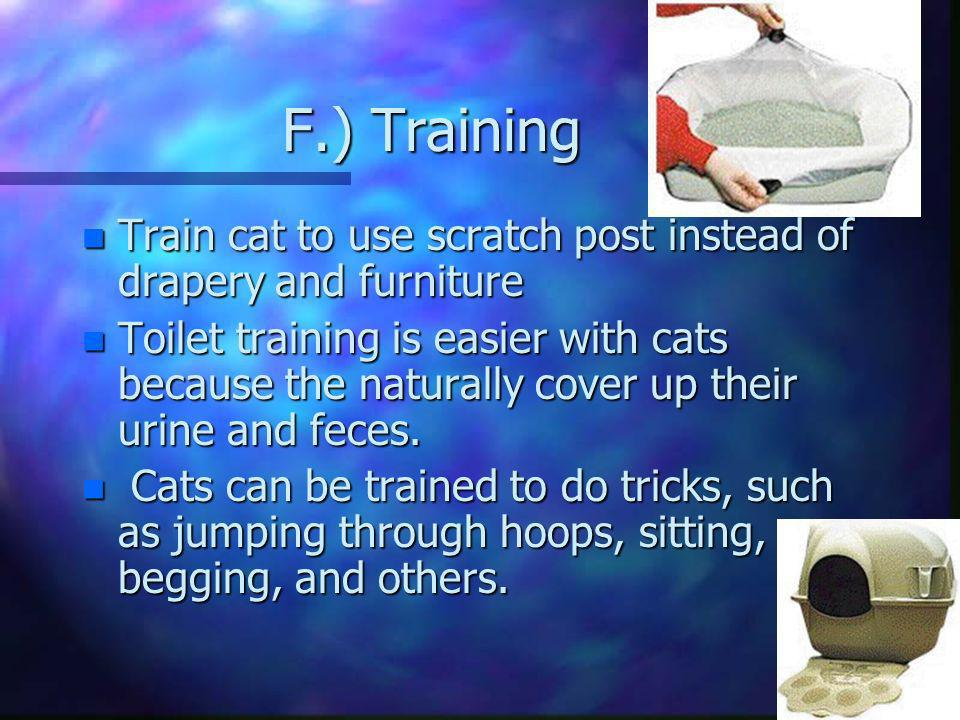 F.) Training Train cat to use scratch post instead of drapery and furniture.