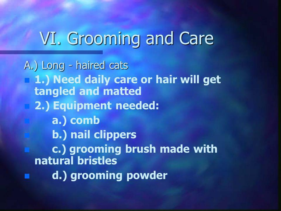 VI. Grooming and Care A.) Long - haired cats