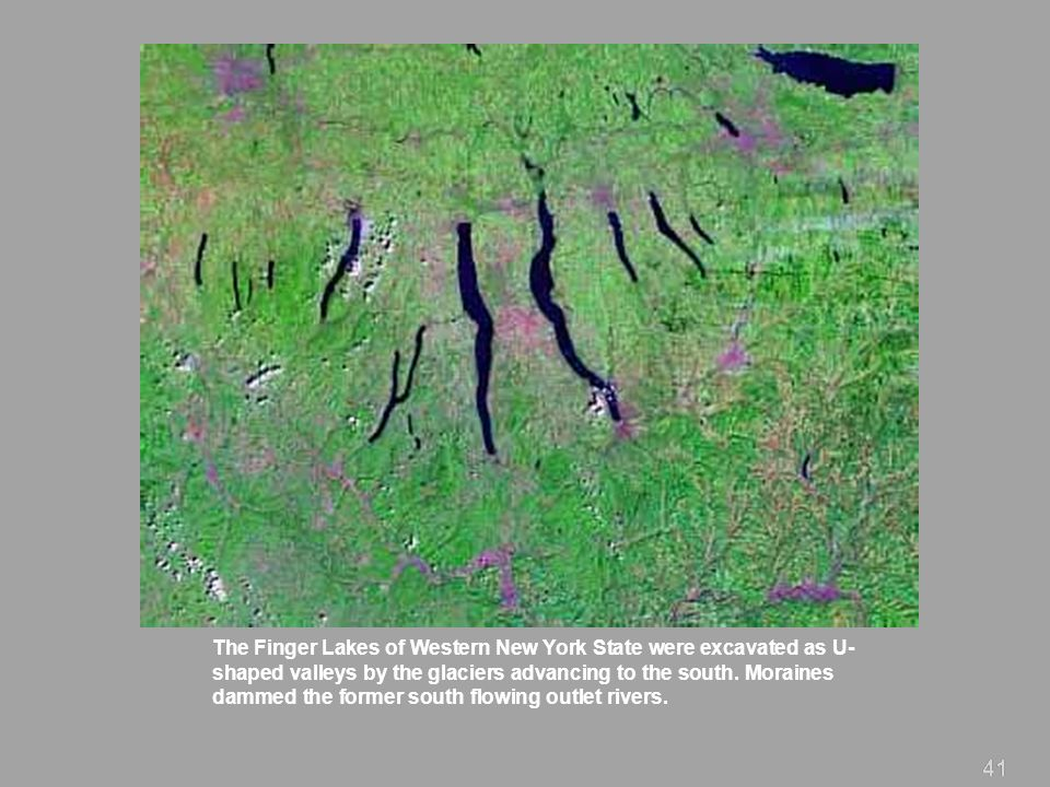 The Finger Lakes of Western New York State were excavated as U-shaped valleys by the glaciers advancing to the south. Moraines dammed the former south flowing outlet rivers.