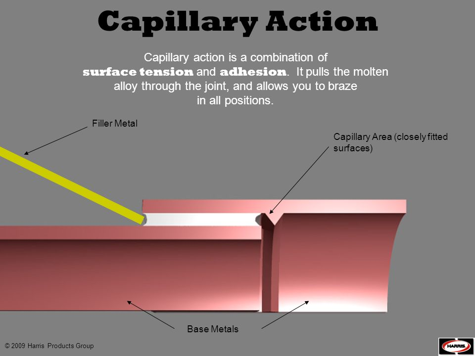 Capillary Action Capillary action is a combination of