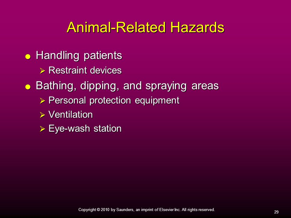 Animal-Related Hazards