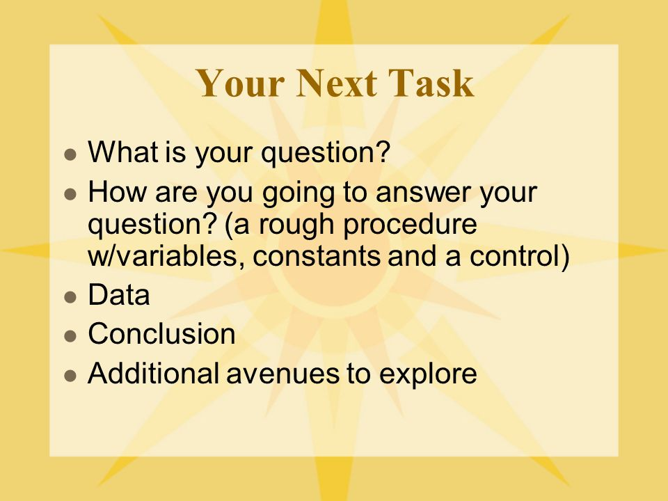 Your Next Task What is your question