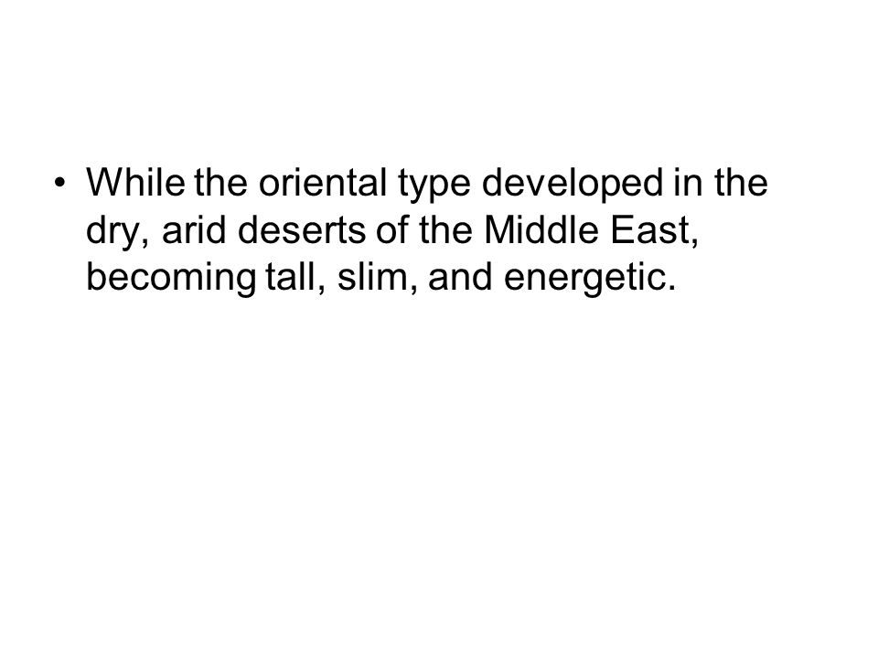 While the oriental type developed in the dry, arid deserts of the Middle East, becoming tall, slim, and energetic.
