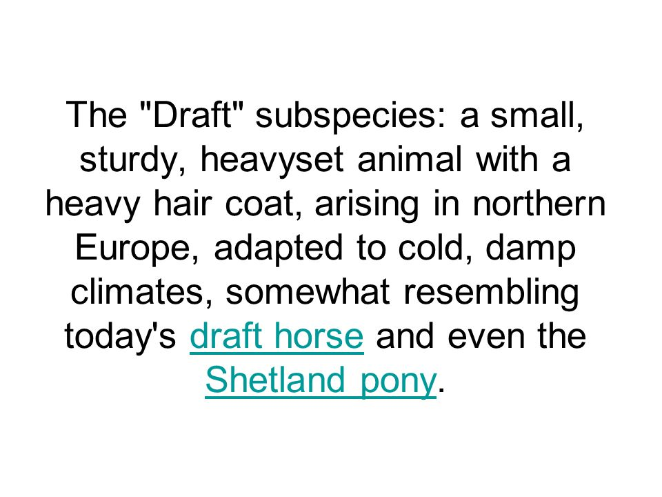 The Draft subspecies: a small, sturdy, heavyset animal with a heavy hair coat, arising in northern Europe, adapted to cold, damp climates, somewhat resembling today s draft horse and even the Shetland pony.