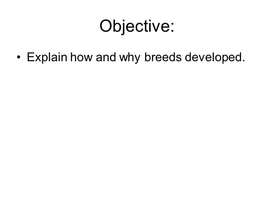 Objective: Explain how and why breeds developed.