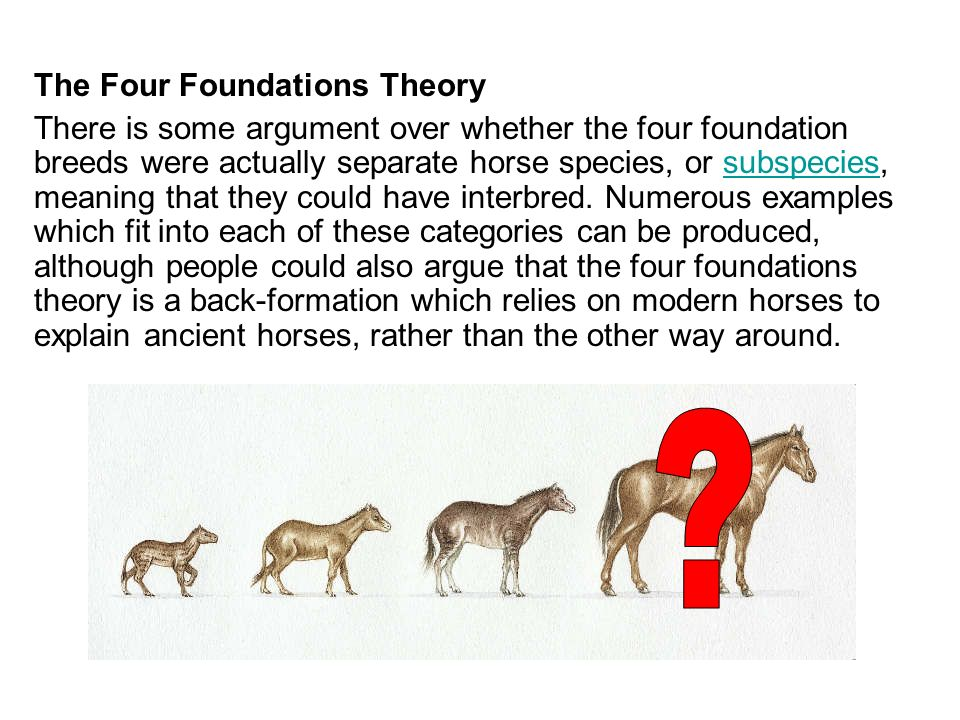 The Four Foundations Theory