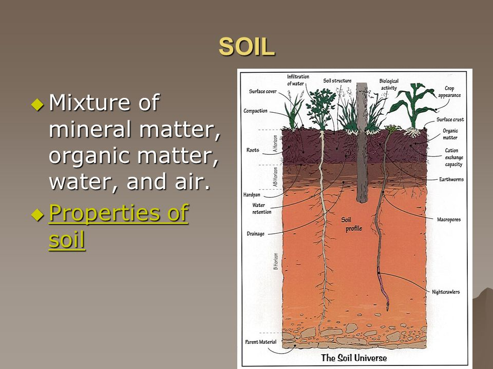 SOIL Mixture of mineral matter, organic matter, water, and air.