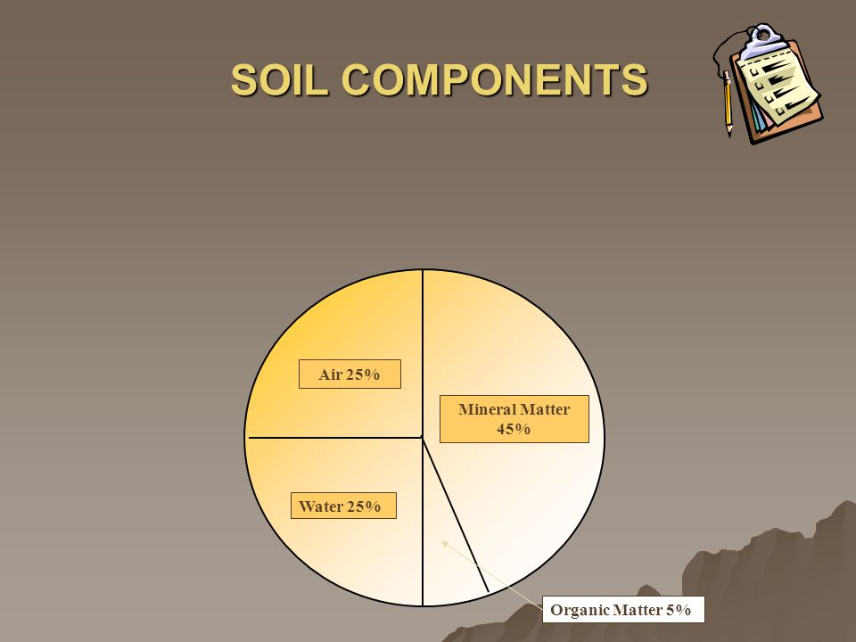 SOIL COMPONENTS Air 25% Mineral Matter 45% Water 25% Organic Matter 5%