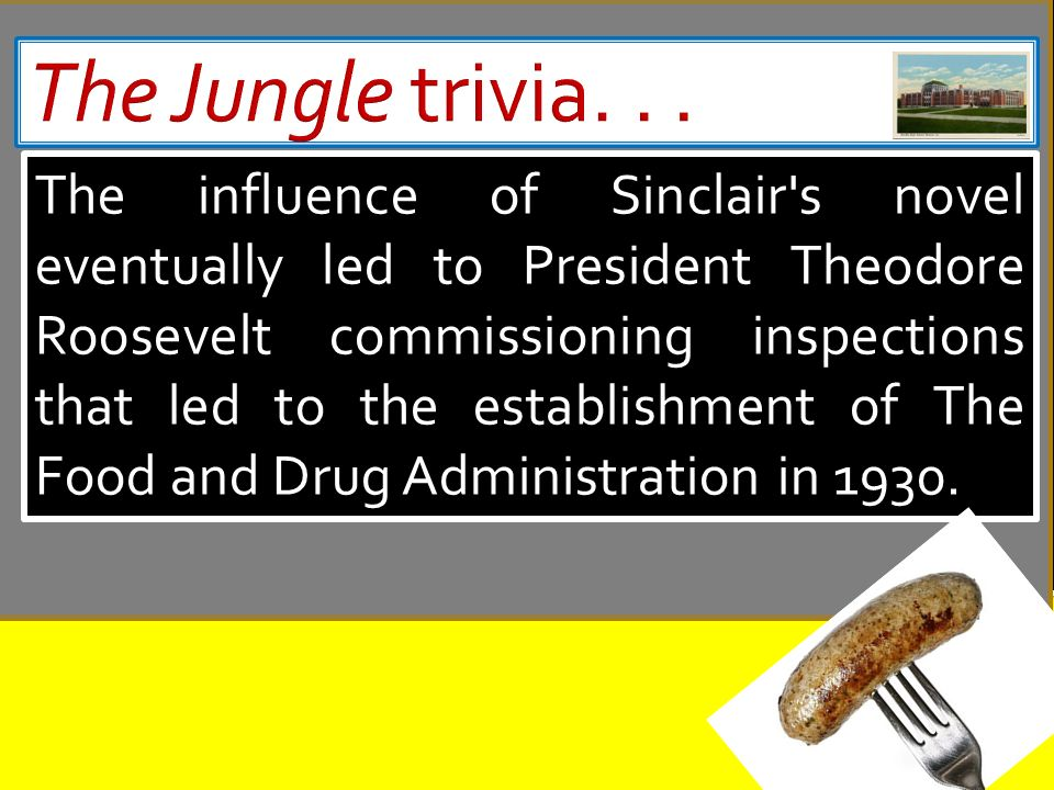 sinclair s purpose in writing the jungle The purpose of upton sinclair's the jungle was to bring the grim conditions of chicago's meatpacking industry and its workers to the american public's attention after sinclair was commissioned to investigate labor conditions in the chicago stockyards he wrote about his observations in the jungle.