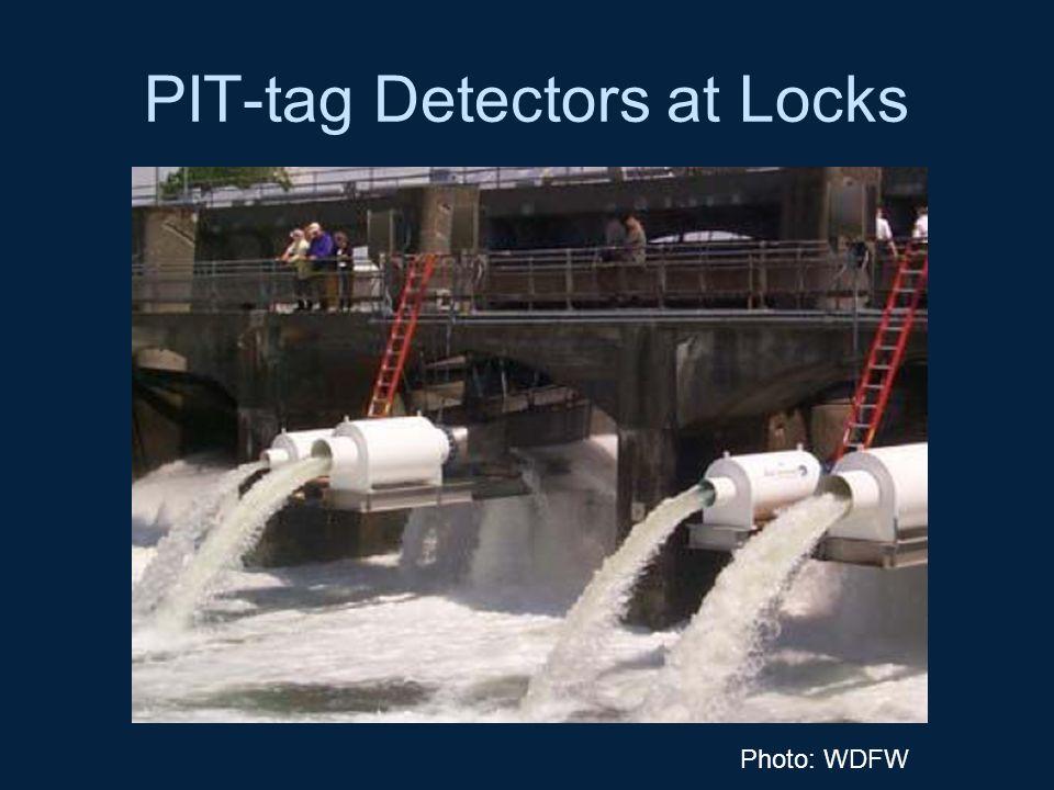 PIT-tag Detectors at Locks