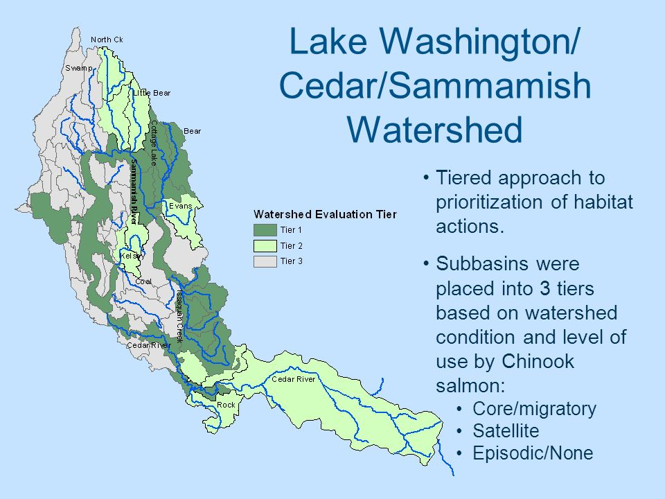 Lake Washington/ Cedar/Sammamish Watershed