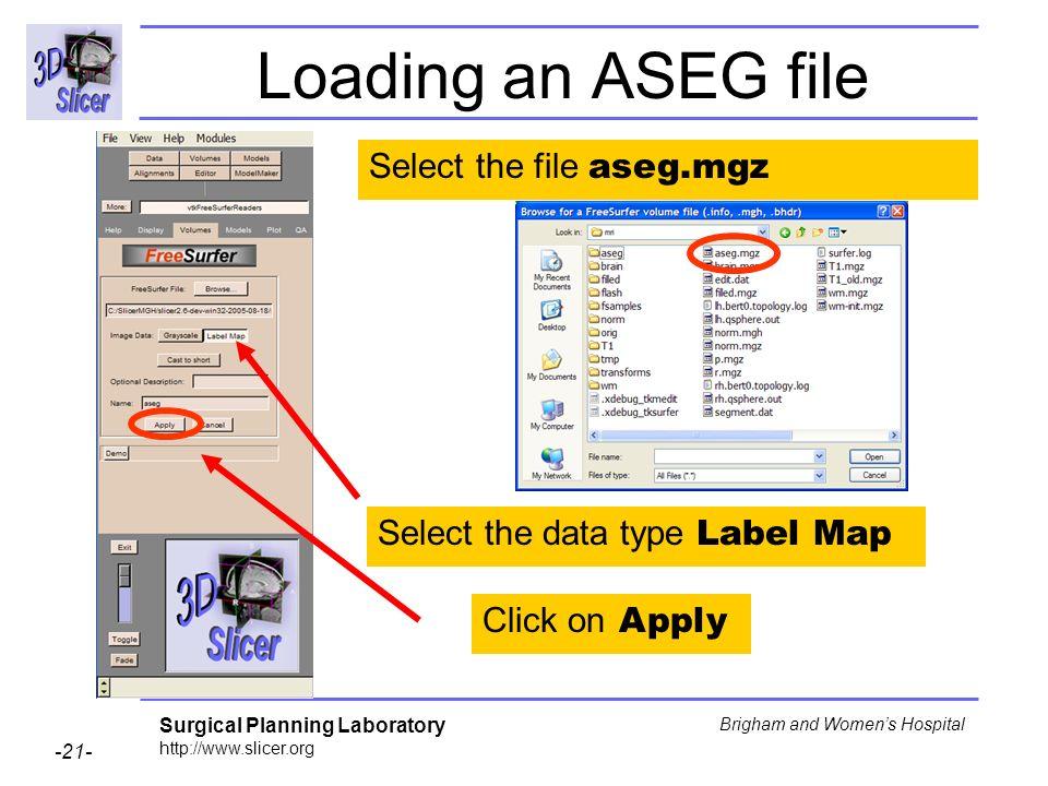 Loading an ASEG file Select the file aseg.mgz
