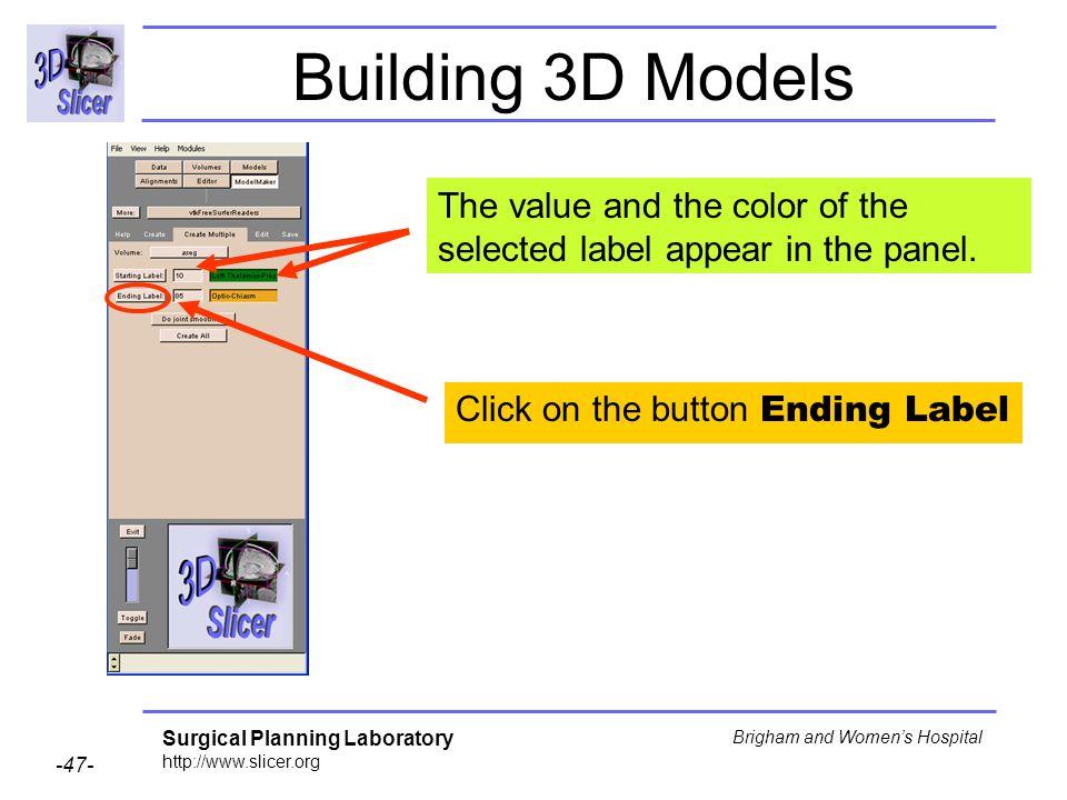 Building 3D Models The value and the color of the selected label appear in the panel.