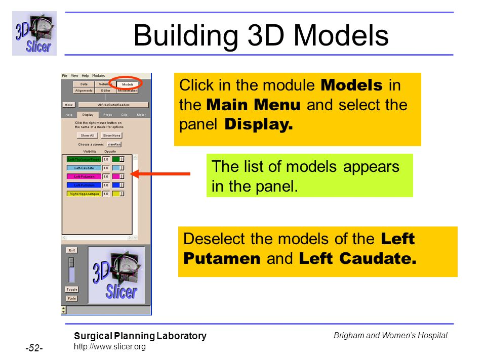 Building 3D Models Click in the module Models in the Main Menu and select the panel Display. The list of models appears in the panel.