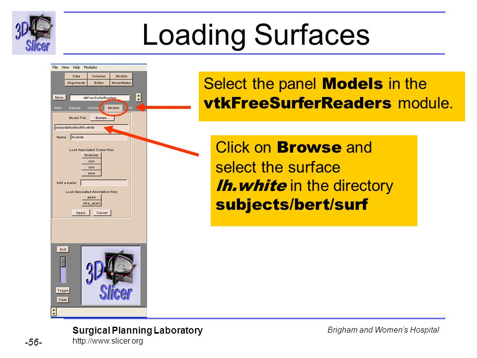 Loading Surfaces Select the panel Models in the vtkFreeSurferReaders module.