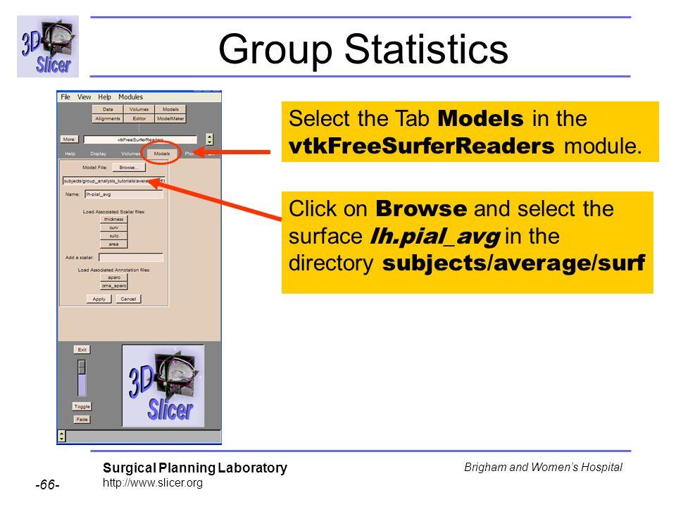 Group Statistics Select the Tab Models in the vtkFreeSurferReaders module.