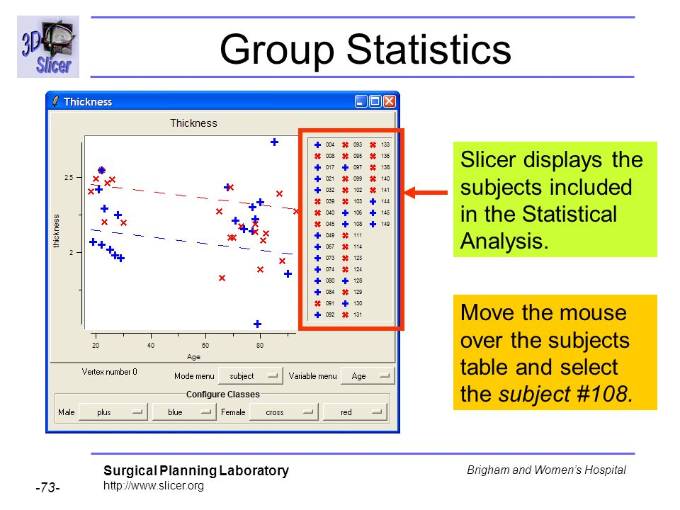 Group Statistics Slicer displays the subjects included in the Statistical Analysis.