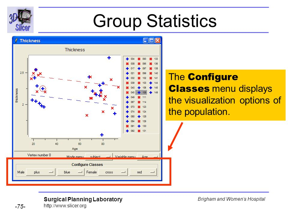 Group Statistics The Configure Classes menu displays the visualization options of the population.