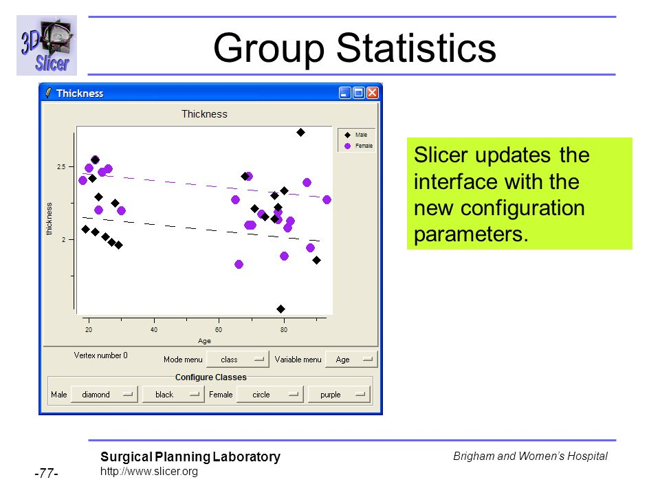 Group Statistics Slicer updates the interface with the new configuration parameters.