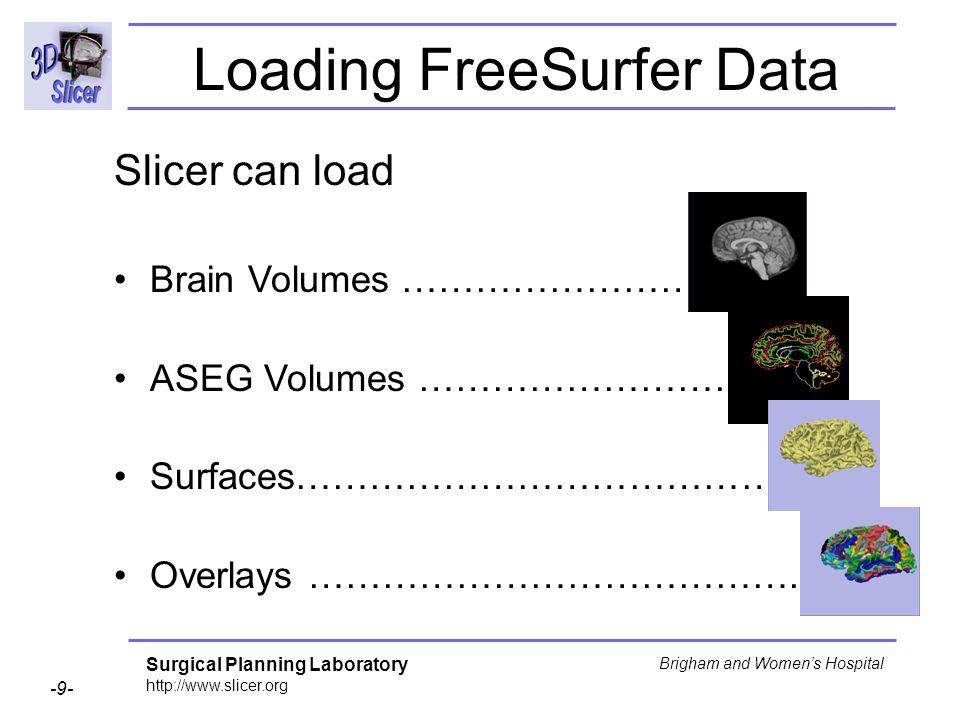 Loading FreeSurfer Data