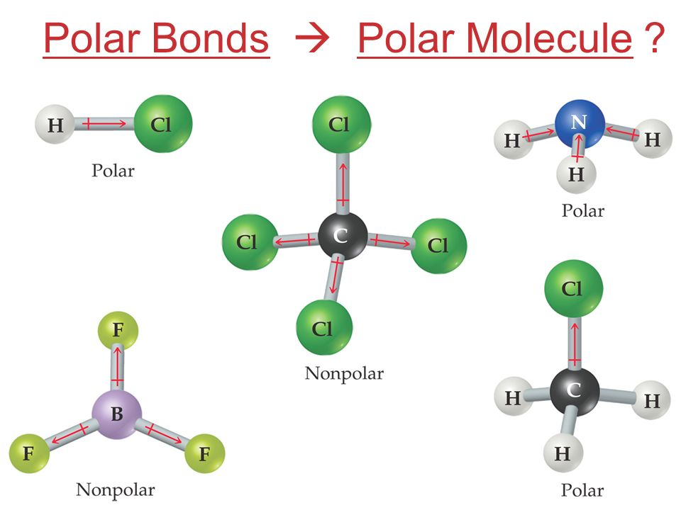 how to know if molecule is polar